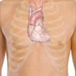 Koroner Arter Hastalığı Nedir